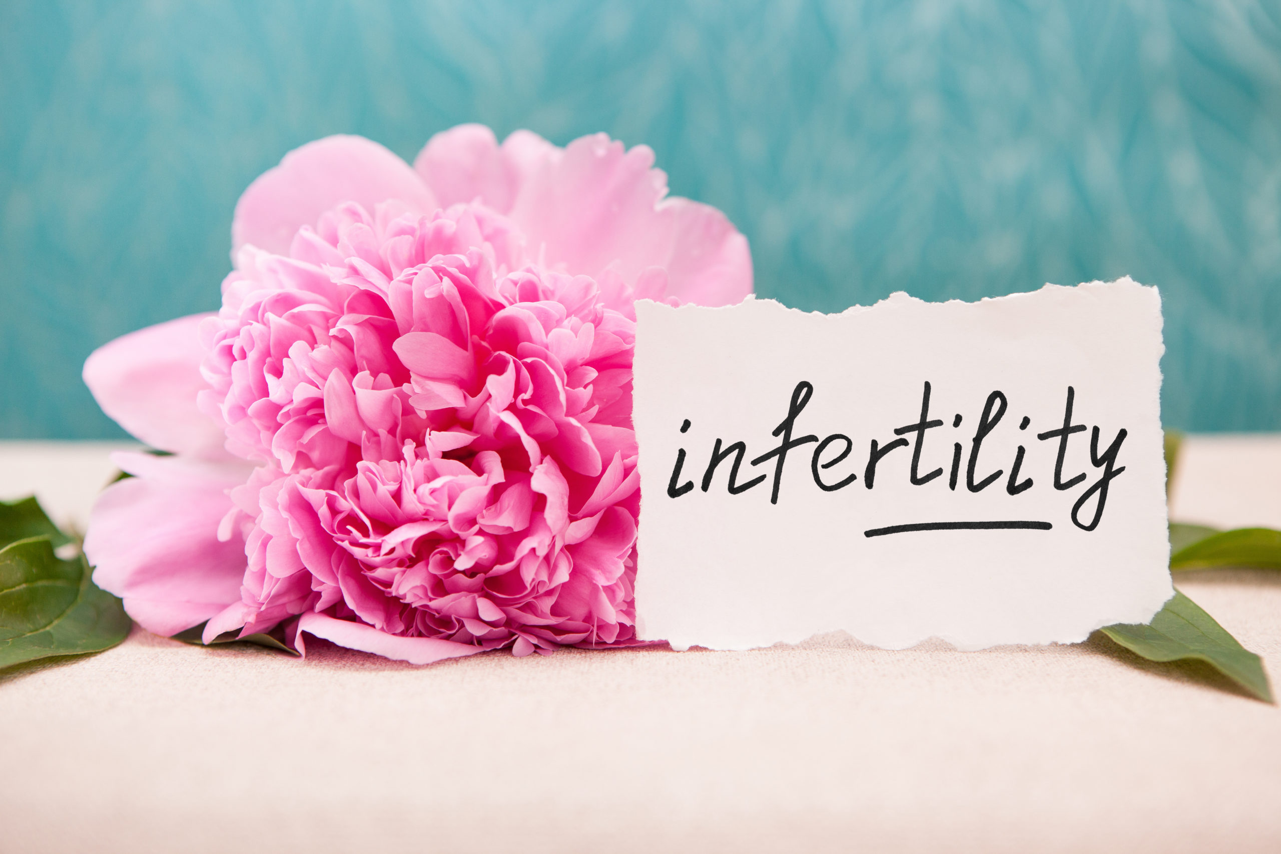 Bristol Infertility